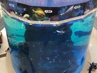 dari panel akrilik tebal 20mm hingga 500mm untuk ikan besar modern