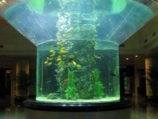 kaca akuarium pmma setengah silinder perspex tangki ikan yang jelas