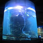 tangki ikan silinder besar akrilik bening untuk akuarium atau taman laut
