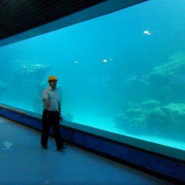 Panel akrilik UV dinding cor untuk akuarium / oceanarium