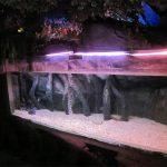 Panel / jendela kolam renang akrilik untuk Underwater Sea World