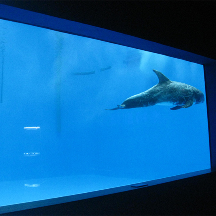 kualitas tinggi Besar akrilik akuarium / jendela kolam renang bawah air jendela tebal lembar