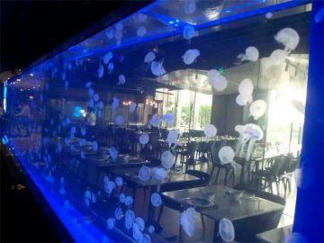 Lembaran akrilik tangki Ubur-ubur