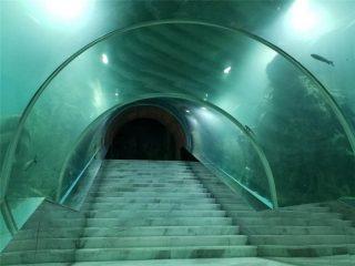 Harga proyek akuarium terowongan akrilik