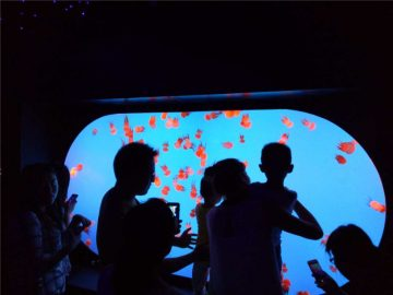Berbagai ukuran bentuk yang disesuaikan berbagai Tangki Jellyfish