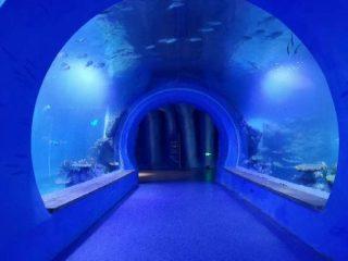 Akrilik terowongan akrilik besar yang jelas dari berbagai bentuk