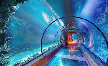 Desain modern akrilik terowongan panjang akuarium